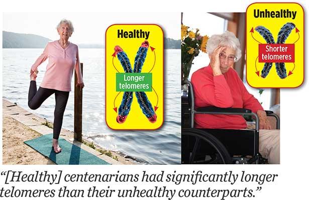 healthy-centenarians
